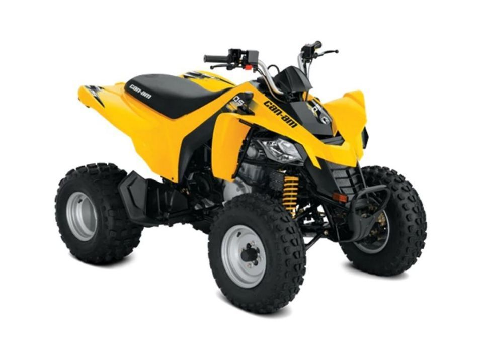 Can-Am DS DS 250 STD model 2019 - 1