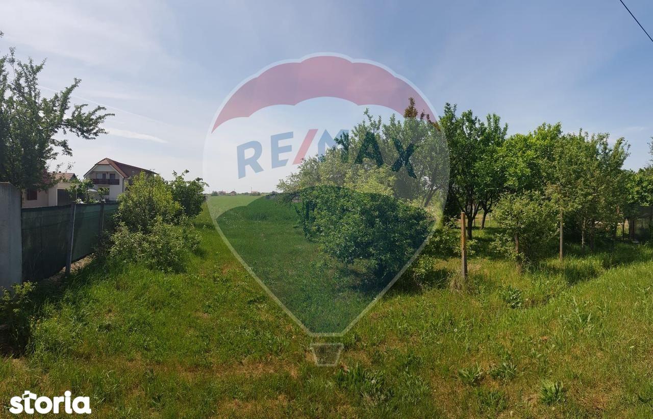 Teren de Vanzare, Satu Mare (judet), Decebal - Foto 3