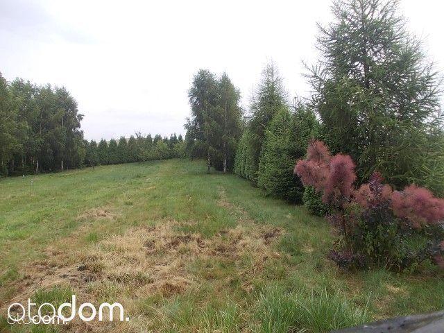 Działka na sprzedaż, Legnickie Pole, legnicki, dolnośląskie - Foto 2