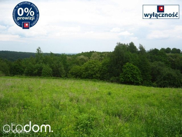 Działka na sprzedaż, Czułów, krakowski, małopolskie - Foto 4