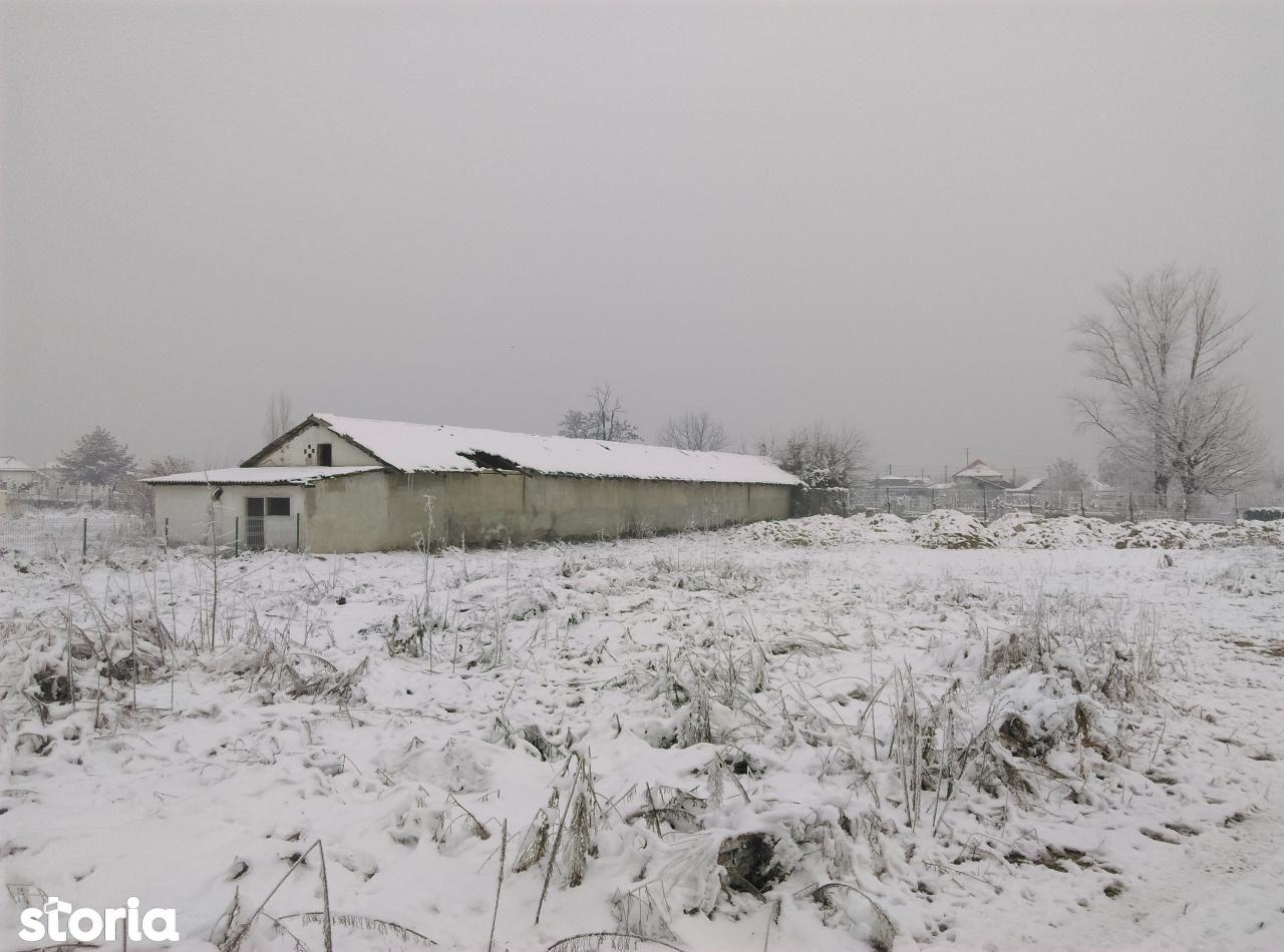 Teren de Vanzare, Dolj (judet), Lascăr Catargiu - Foto 14
