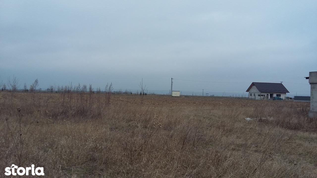 Teren de Vanzare, Suceava (judet), Dumbrăveni - Foto 1