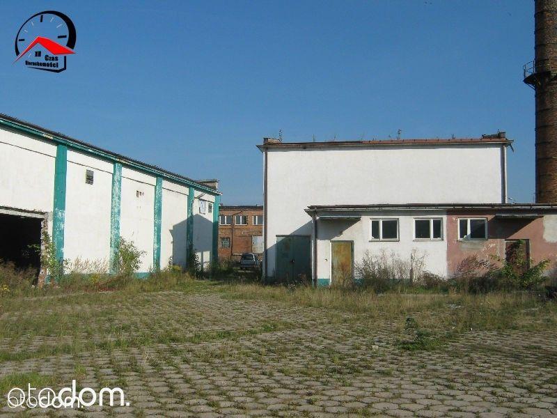 Działka na sprzedaż, Kruszwica, inowrocławski, kujawsko-pomorskie - Foto 10