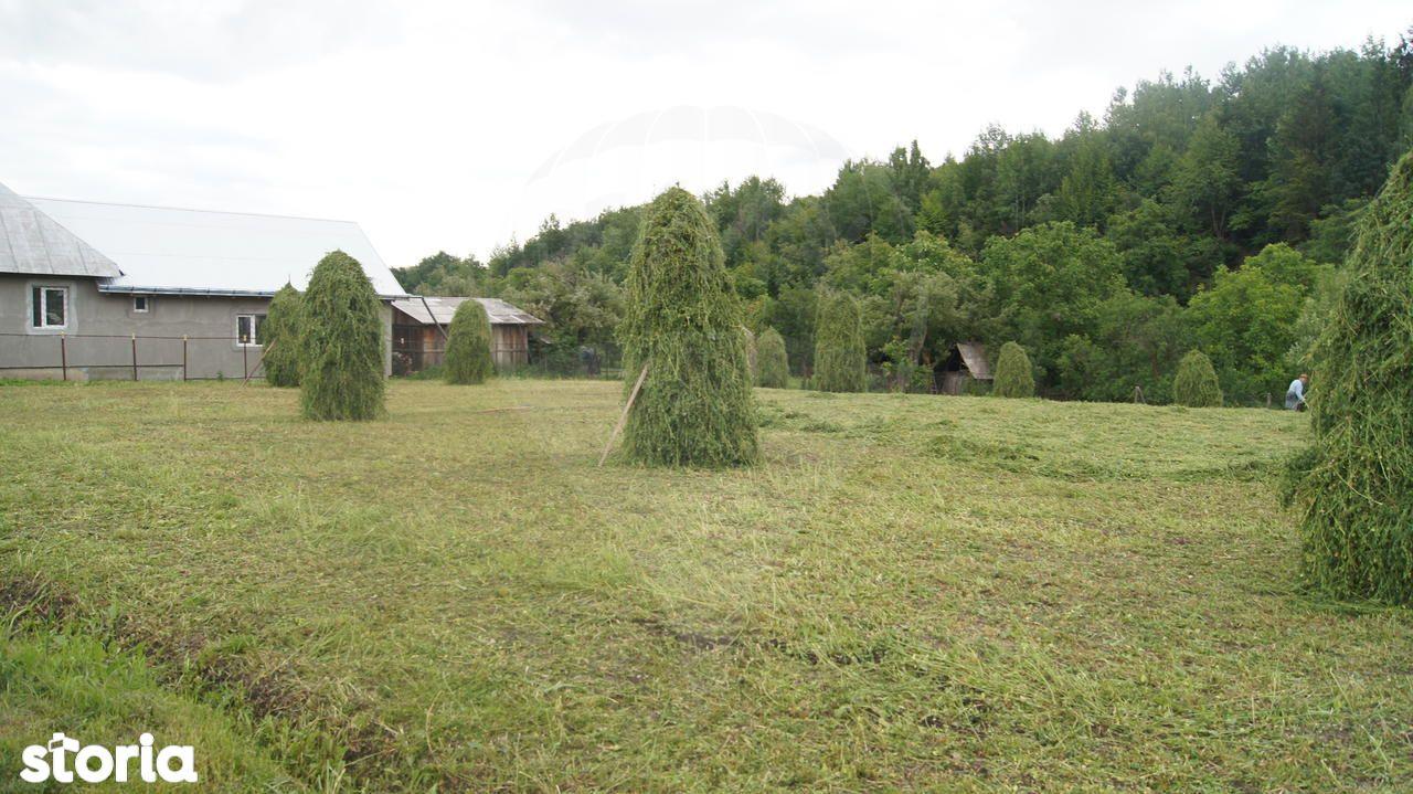 Casa de vanzare, Neamț (judet), Bălţăteşti - Foto 9