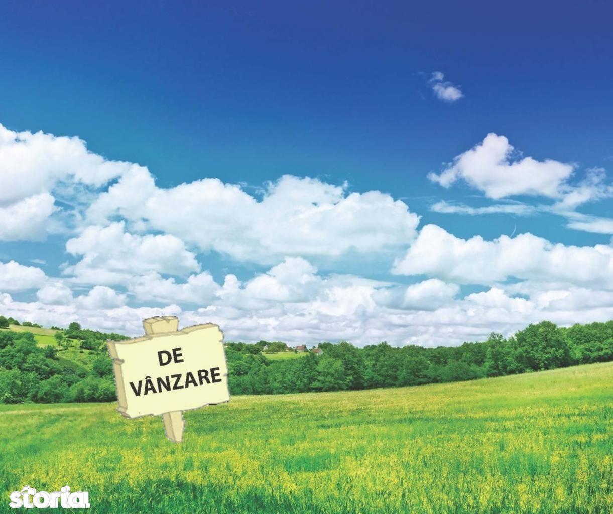 Teren de Vanzare, Bucuresti, Sectorul 5, Rahova - Foto 1