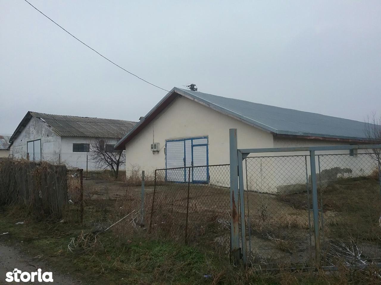 Depozit / Hala de vanzare, Iași (judet), Podu Iloaiei - Foto 4