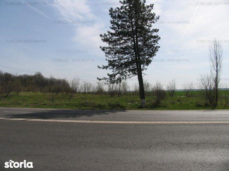 Teren de Vanzare, Tancabesti, Bucuresti - Ilfov - Foto 3