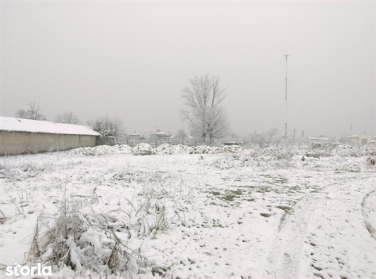 Teren de Vanzare, Dolj (judet), Lascăr Catargiu - Foto 20