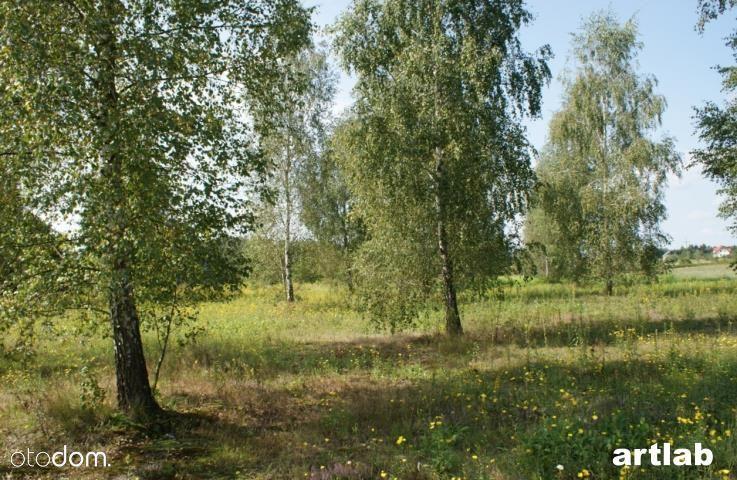 Działka na sprzedaż, Żelechów, grodziski, mazowieckie - Foto 9
