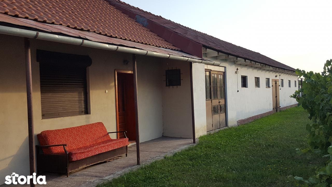 Casa de vanzare, Bihor (judet), Copăcel - Foto 3