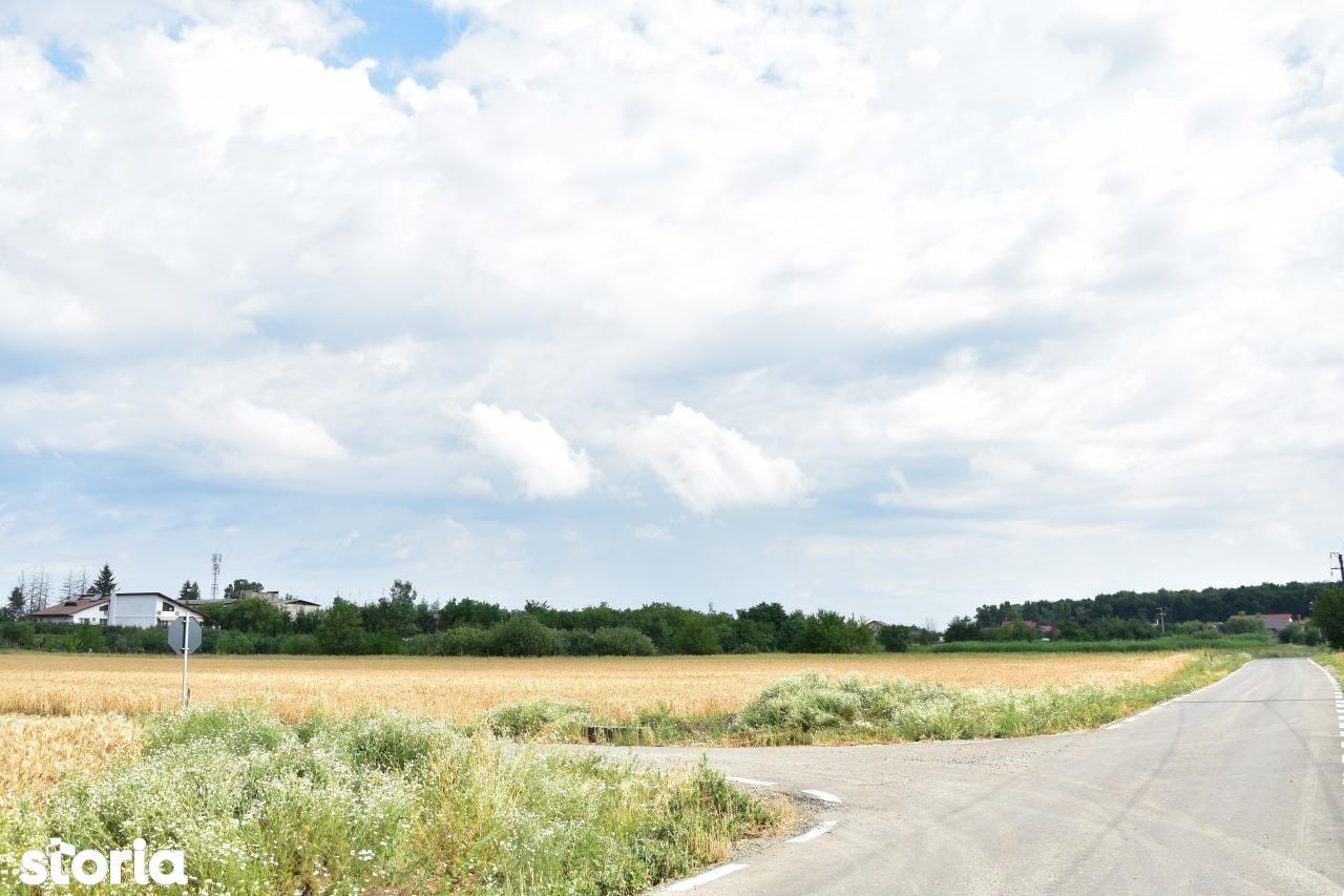 Teren de Vanzare, Ilfov (judet), Ciolpani - Foto 2