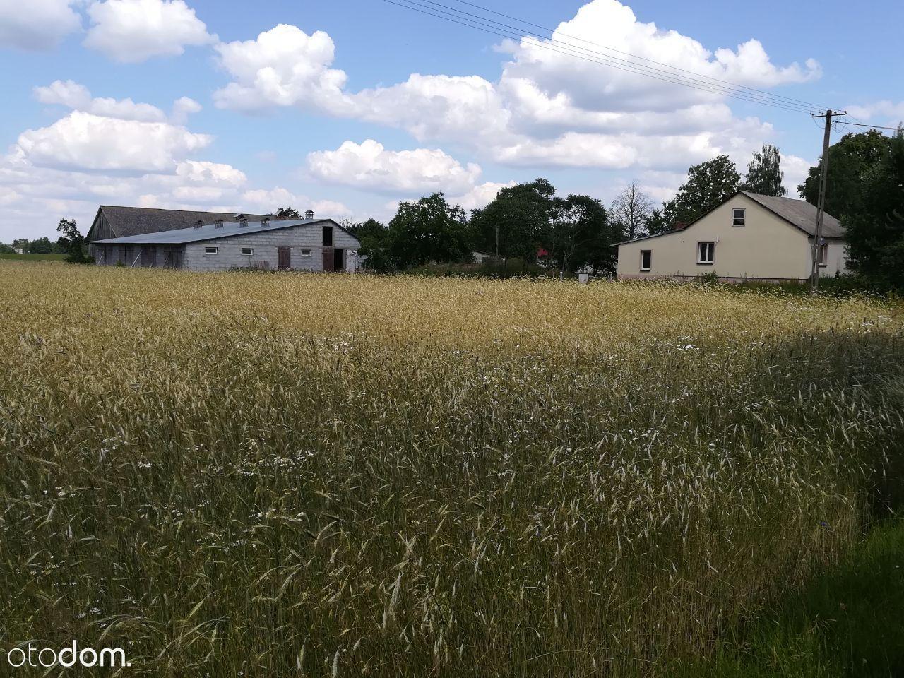 Dom na sprzedaż, Niemojki, łosicki, mazowieckie - Foto 1