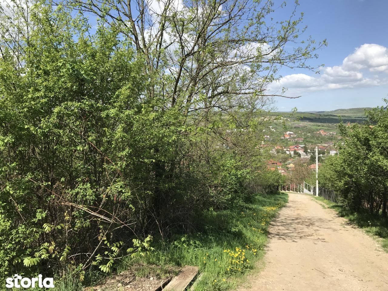 Teren de Vanzare, Hunedoara (judet), Hunedoara - Foto 2