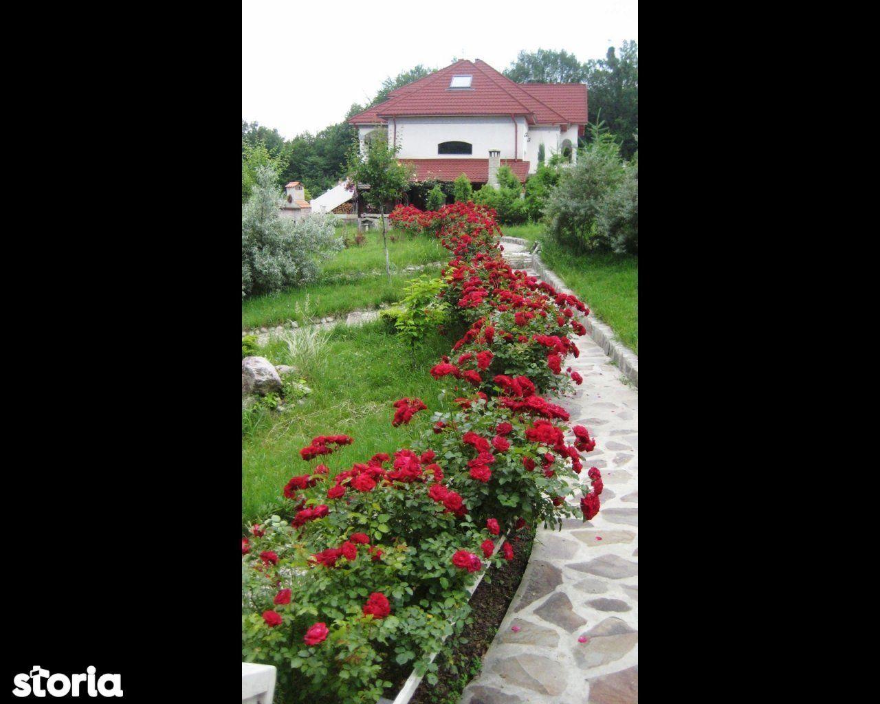 Casa de vanzare, Vâlcea (judet), Strada Dealul Malului - Foto 6