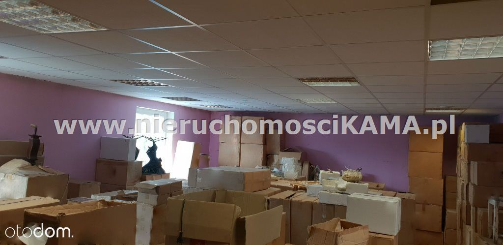 Hala/Magazyn na wynajem, Bielsko-Biała, śląskie - Foto 4