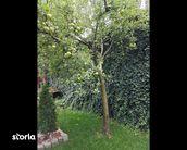 Casa de vanzare, Cluj (judet), Strada Câmpina - Foto 7