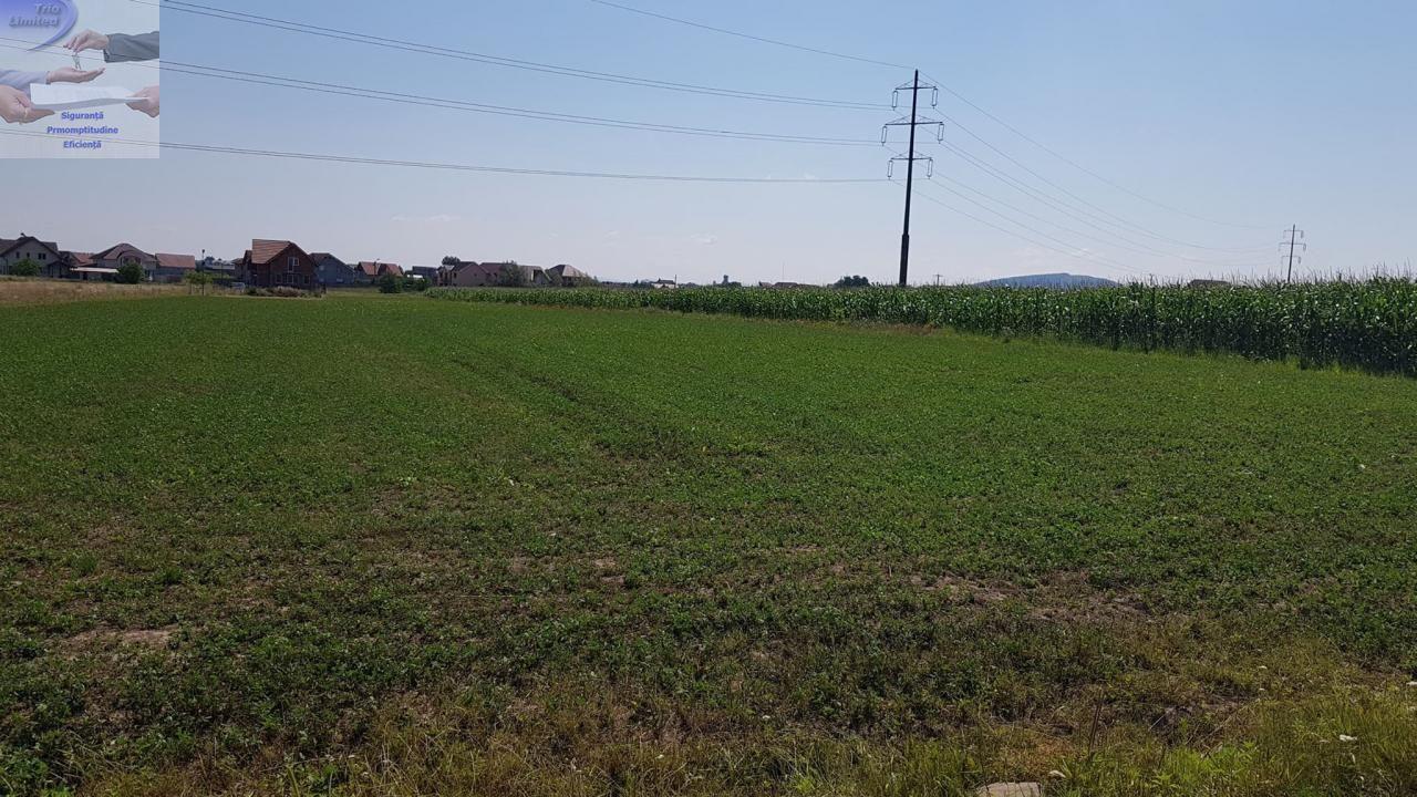 Teren de Vanzare, Bihor (judet), Sânmartin - Foto 4