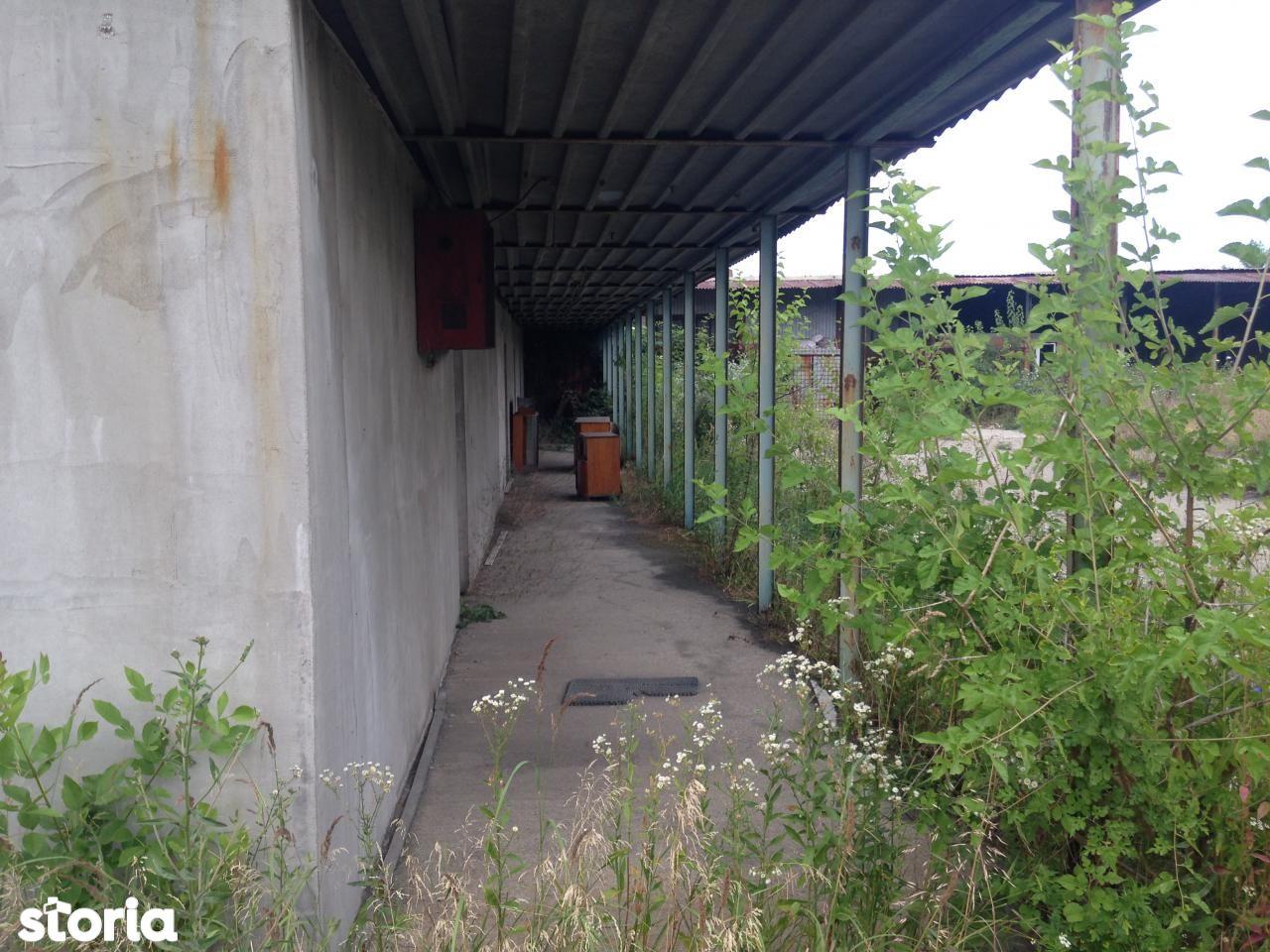 Depozit / Hala de vanzare, Dolj (judet), Craiova - Foto 3