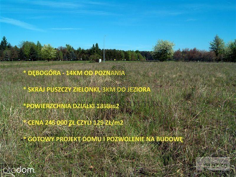 Działka na sprzedaż, Dębogóra, poznański, wielkopolskie - Foto 1