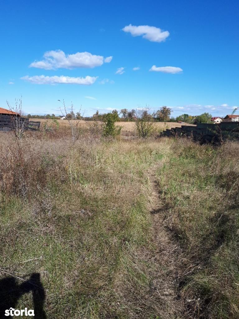 Teren de Vanzare, Ilfov (judet), Strada Școlii - Foto 10