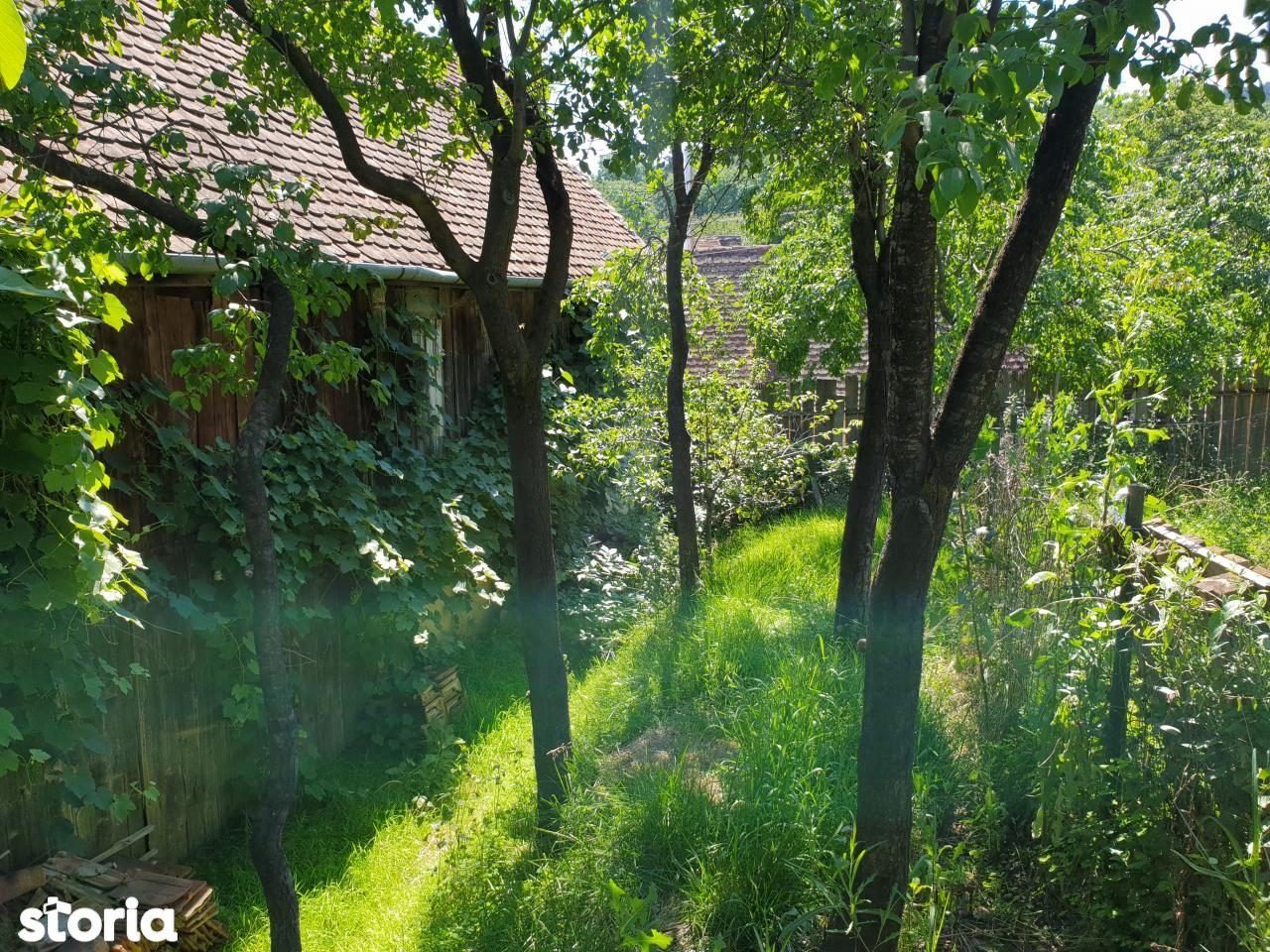 Casa de vanzare, Poplaca, Sibiu - Foto 8