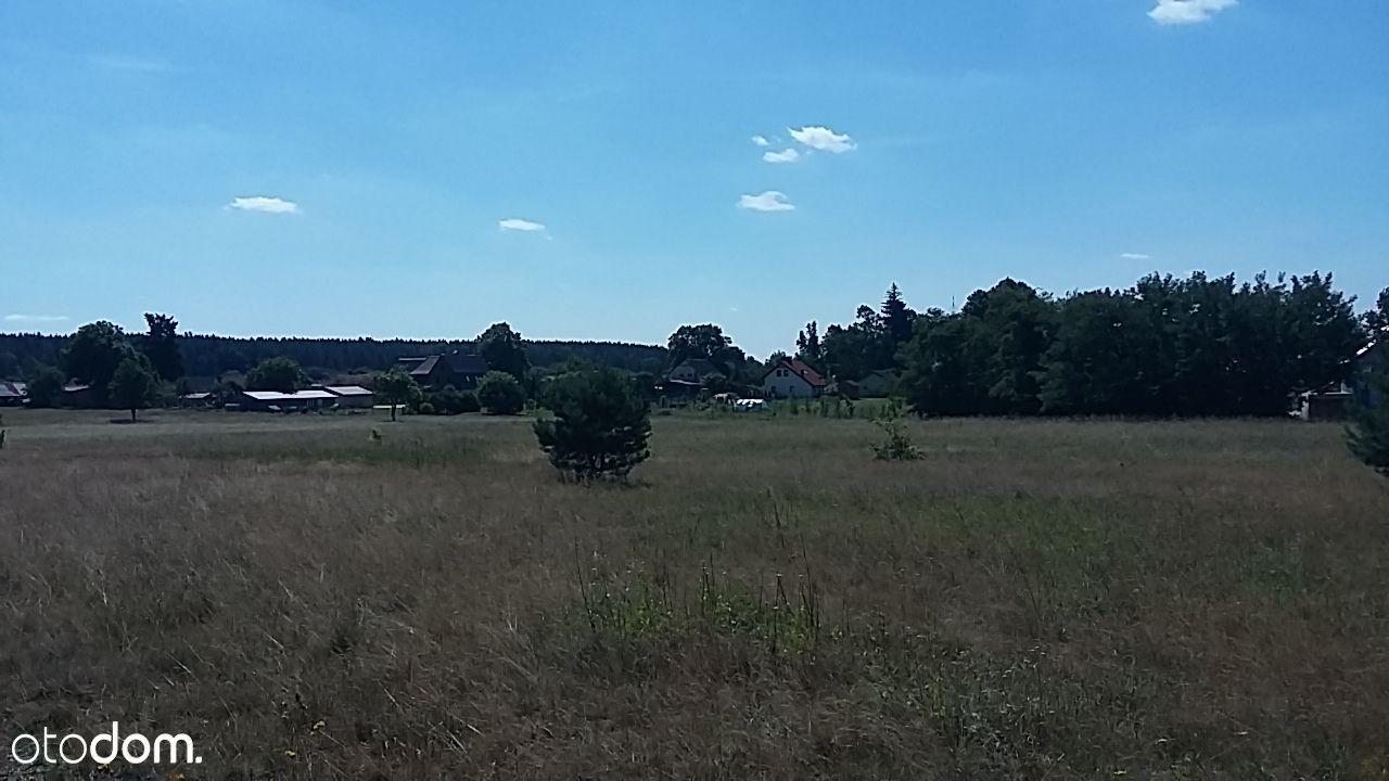 Działka na sprzedaż, Zimna Woda, lubiński, dolnośląskie - Foto 4