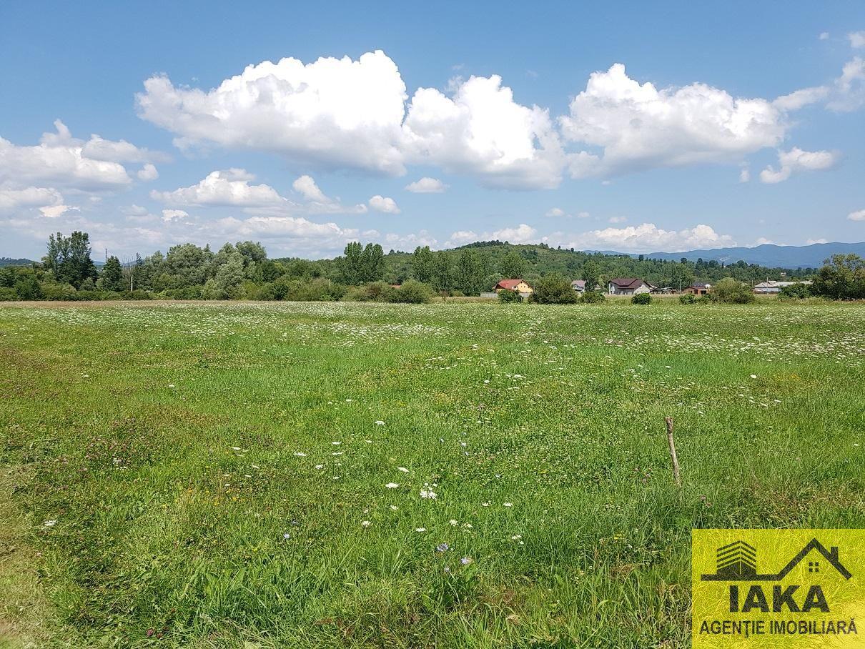 Teren de Vanzare, Sălaj (judet), Cozla - Foto 3
