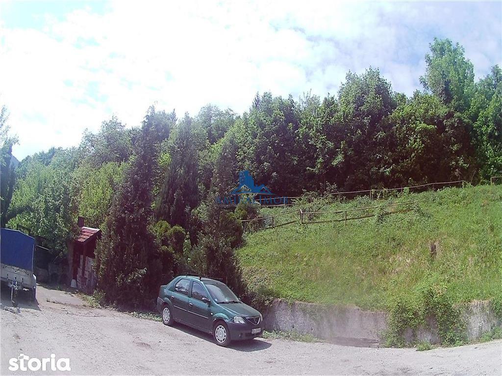 Teren de Vanzare, Brașov (judet), Strada Cibinului - Foto 12