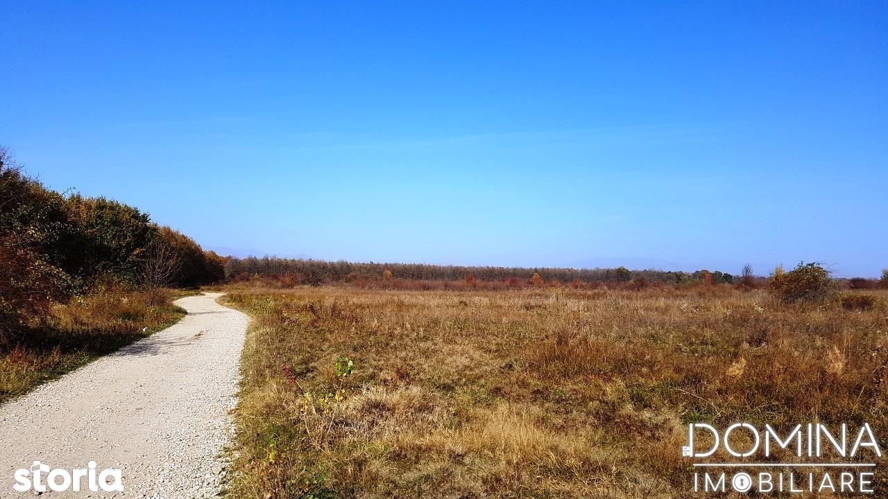 Teren de Vanzare, Gorj (judet), Cam - Foto 5
