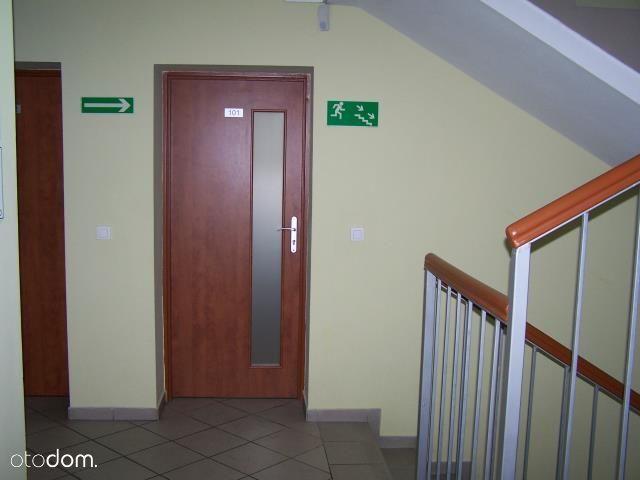 Lokal użytkowy na wynajem, Poznań, Grunwald - Foto 1