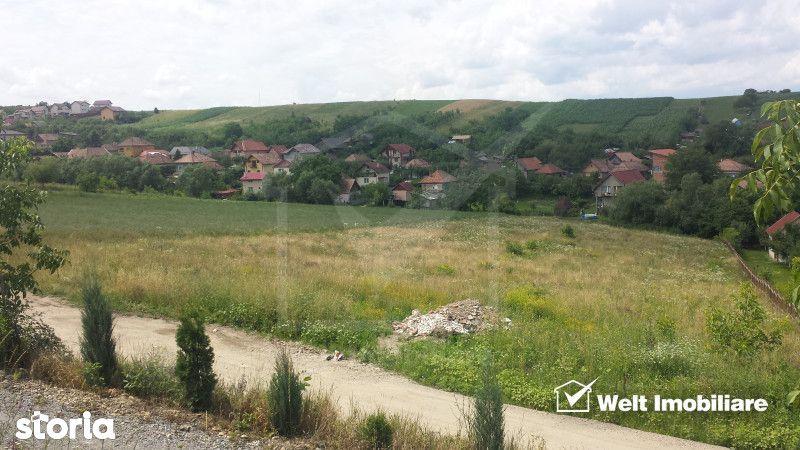 Teren de Vanzare, Cluj (judet), Dezmir - Foto 2
