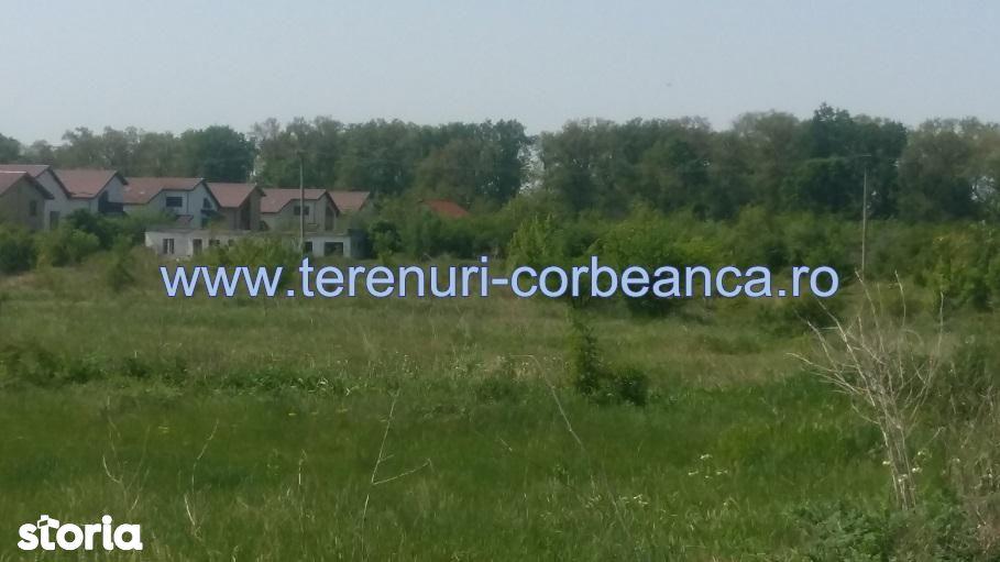 Teren de Vanzare, Corbeanca, Bucuresti - Ilfov - Foto 1