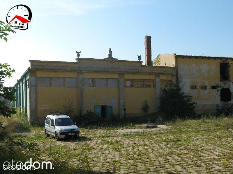 Działka na sprzedaż, Kruszwica, inowrocławski, kujawsko-pomorskie - Foto 7