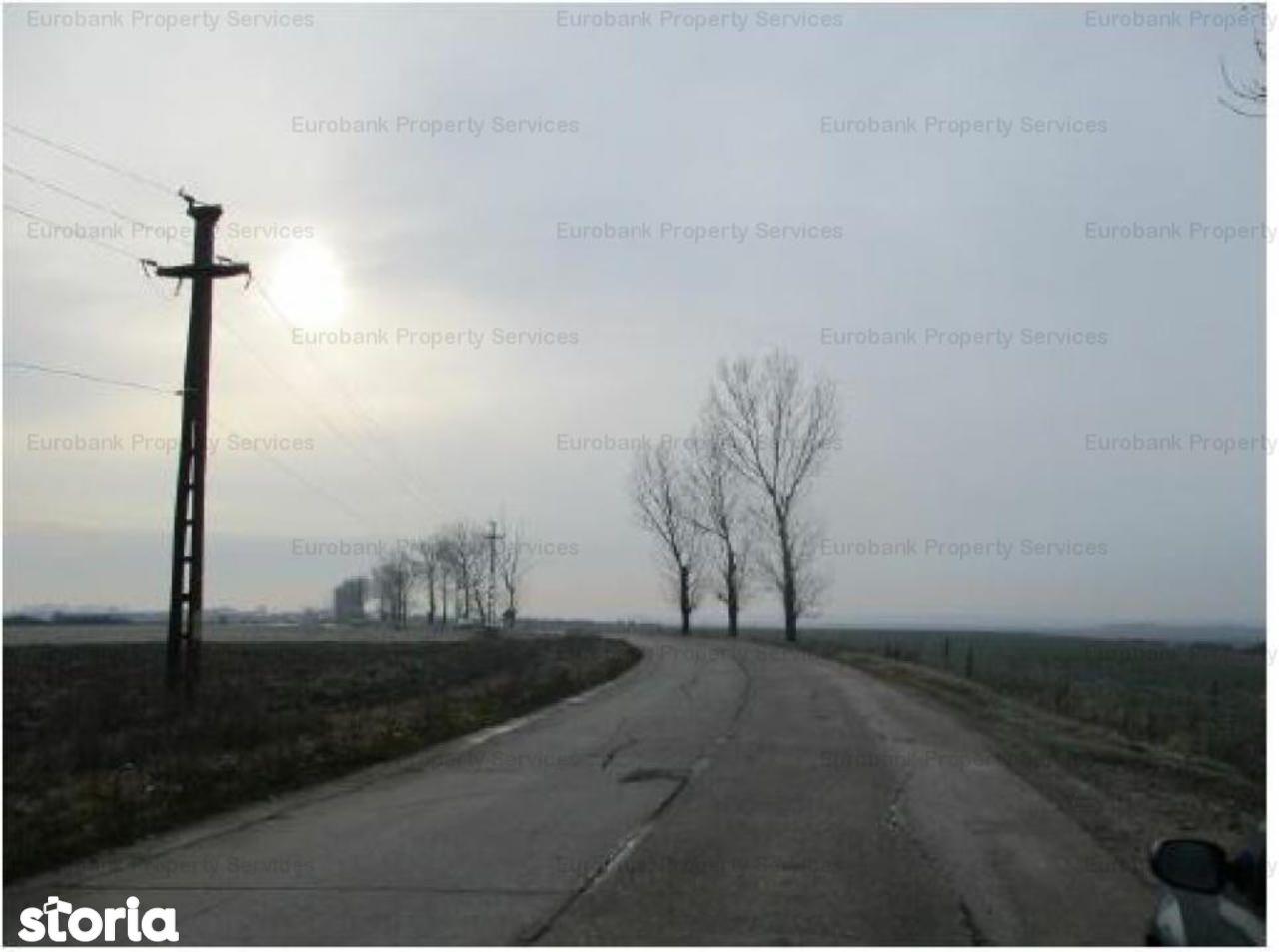 Teren de Vanzare, Dâmbovița (judet), Ulmi - Foto 1