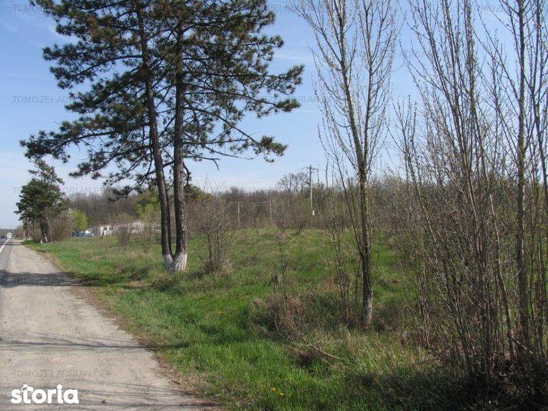 Teren de Vanzare, Tancabesti, Bucuresti - Ilfov - Foto 8