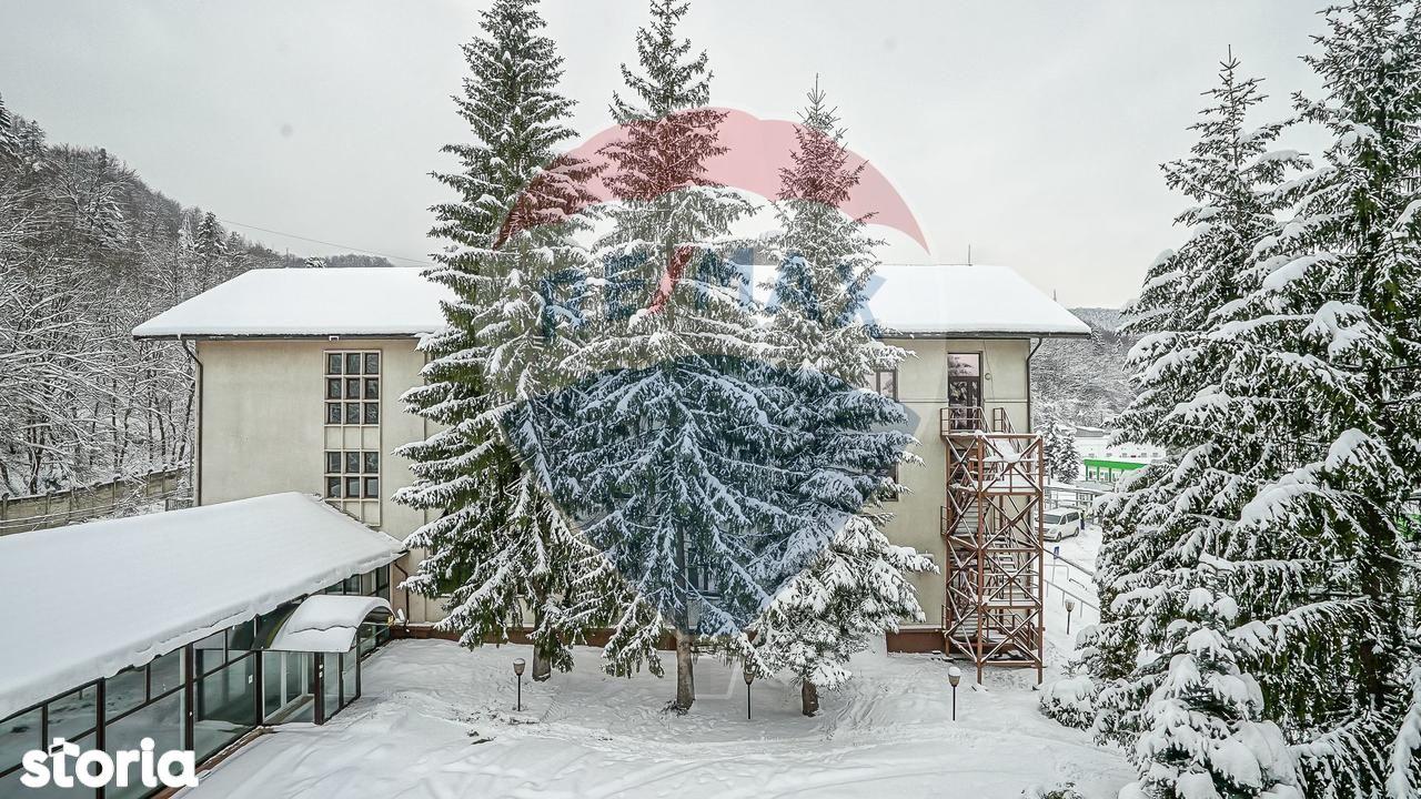 Birou de inchiriat, Brașov (judet), Strada Panselelor - Foto 4