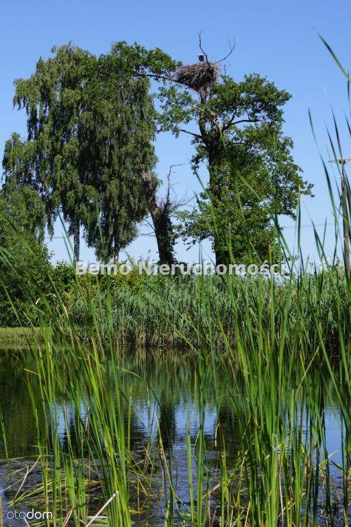 Dom na sprzedaż, Skrzynki, włocławski, kujawsko-pomorskie - Foto 6