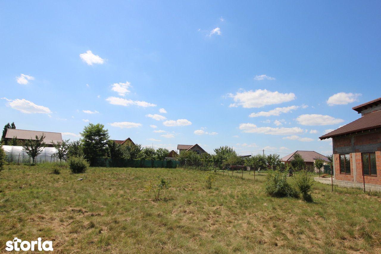 Teren de Vanzare, Timiș (judet), Drumul DJ609F - Foto 4