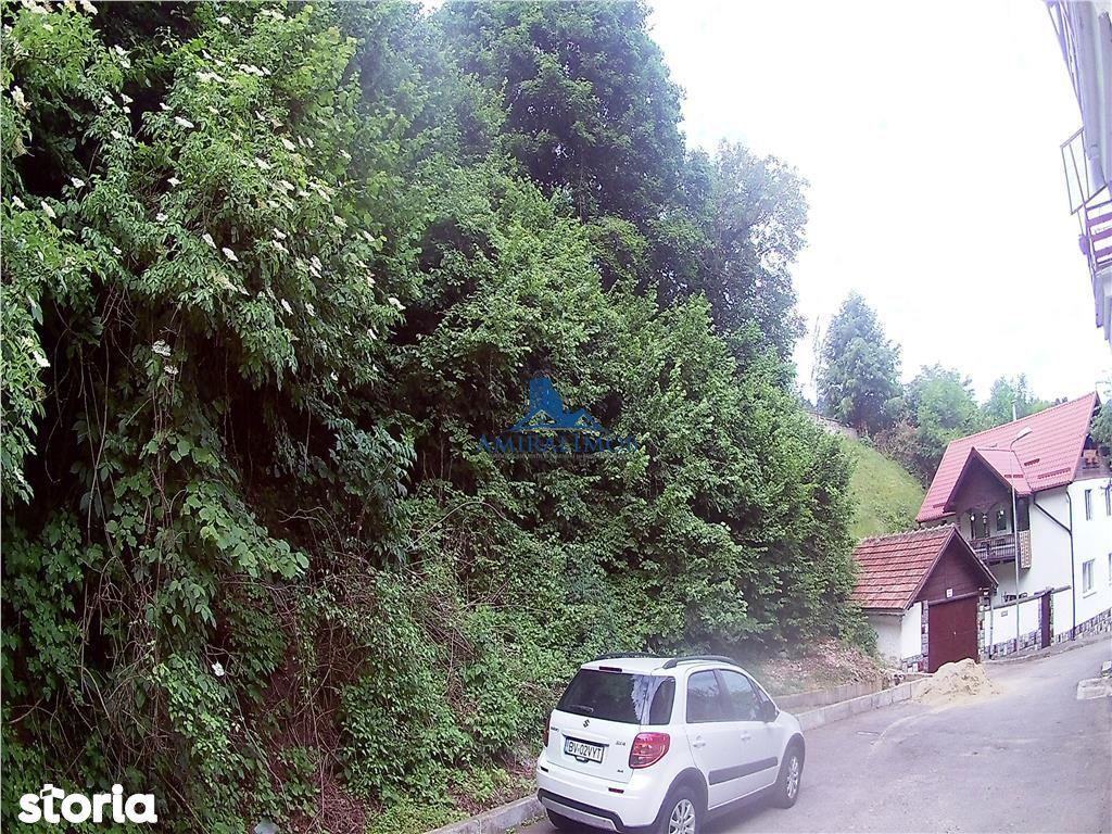 Teren de Vanzare, Brașov (judet), Strada Valea Tei - Foto 1