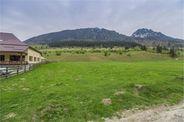 Teren de Vanzare, Zarnesti, Arges - Foto 1