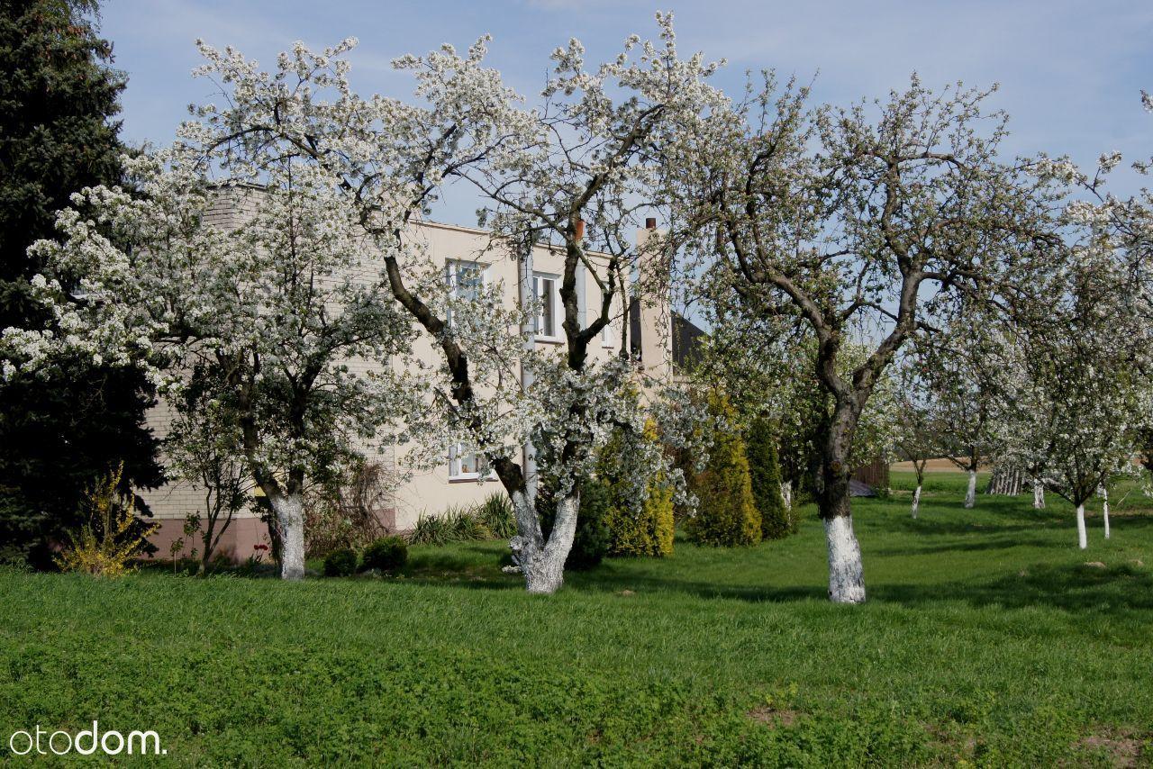Dom na sprzedaż, Rzadka Wola-Parcele, włocławski, kujawsko-pomorskie - Foto 3