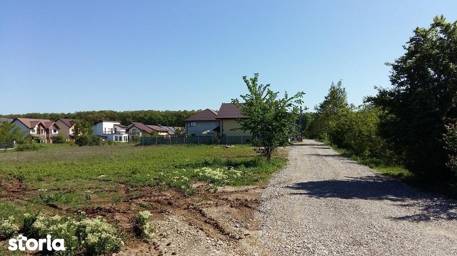 Teren de Vanzare, Ilfov (judet), Corbeanca - Foto 2