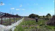 Teren de Vanzare, Giurgiu (judet), Gorneni - Foto 1
