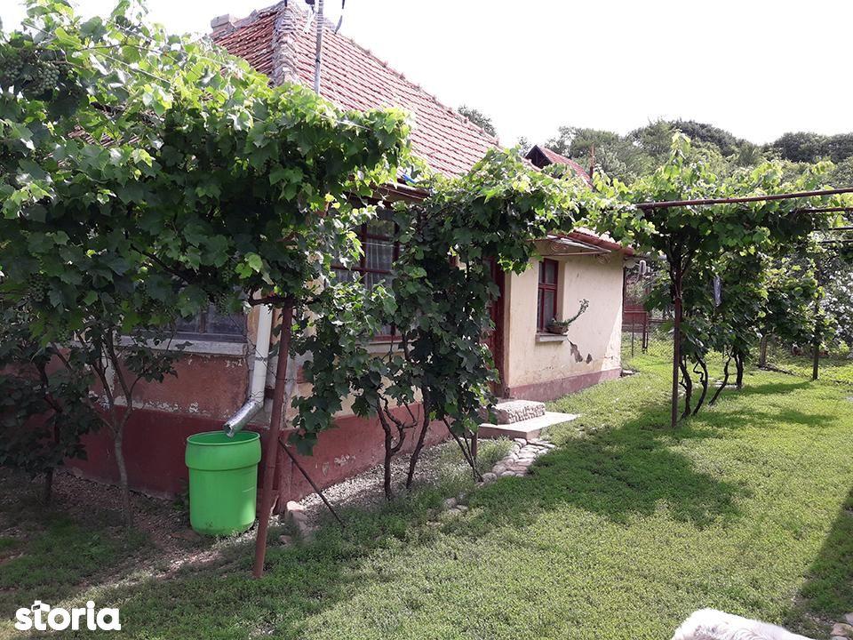 Casa de vanzare, Bihor (judet), Podgoria - Foto 5
