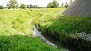 Działka na sprzedaż, Zielony Grąd, elbląski, warmińsko-mazurskie - Foto 7