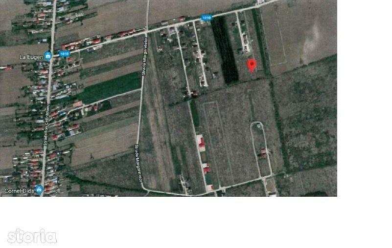 Teren de Vanzare, Ilfov (judet), Ciorogârla - Foto 5
