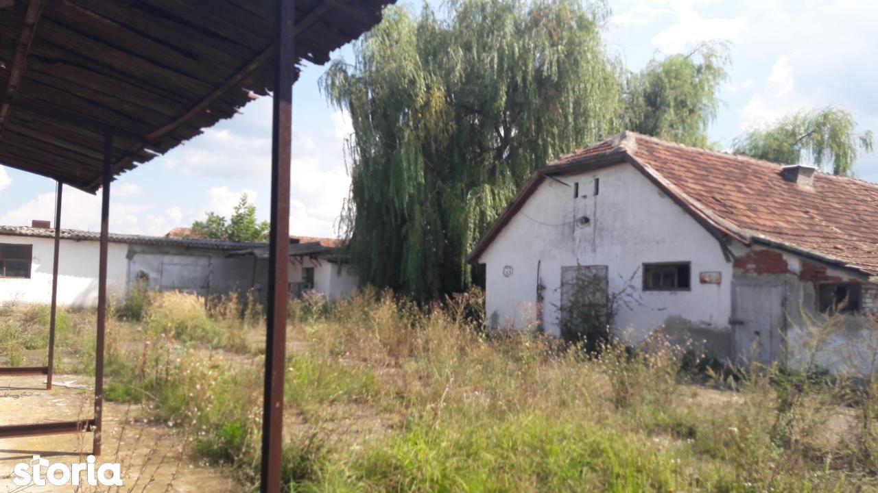 Depozit / Hala de vanzare, Timiș (judet), Remetea Mare - Foto 6