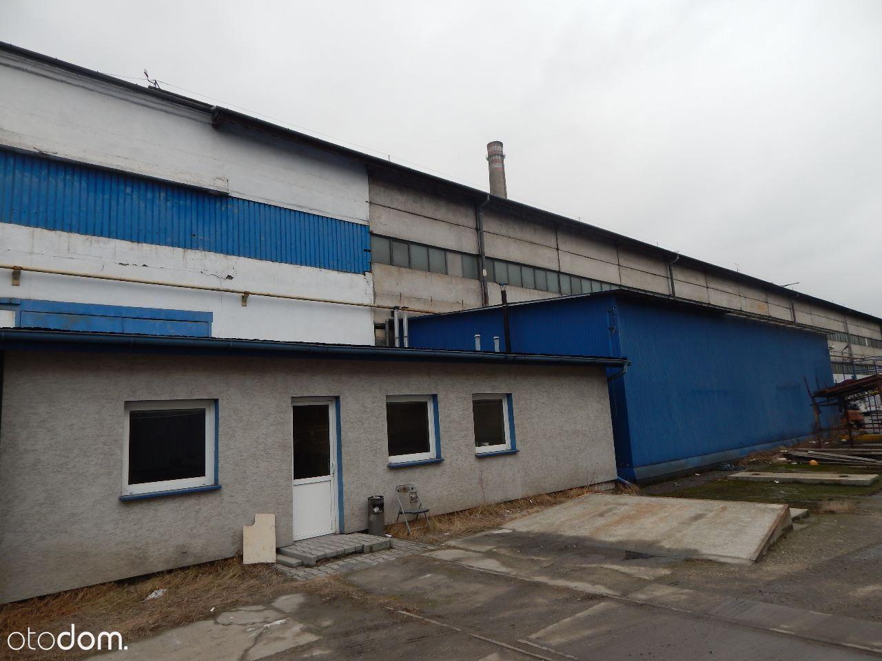 Hala/Magazyn na sprzedaż, Skawina, krakowski, małopolskie - Foto 7