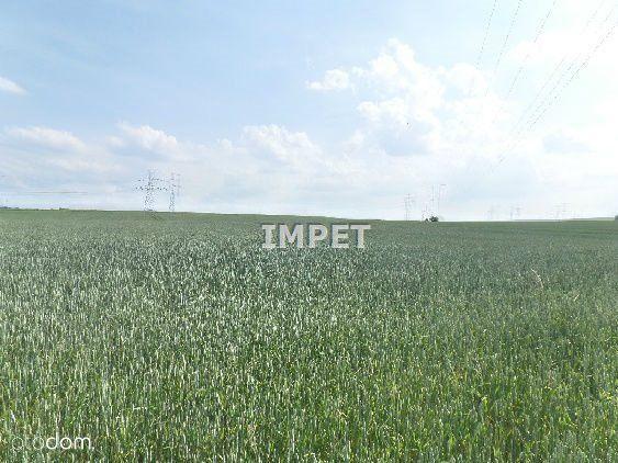 Działka na sprzedaż, Radzimów, zgorzelecki, dolnośląskie - Foto 2