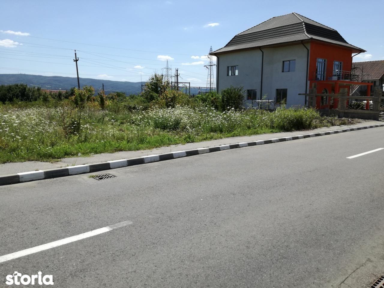 Teren de Vanzare, Vâlcea (judet), Sud - Foto 11